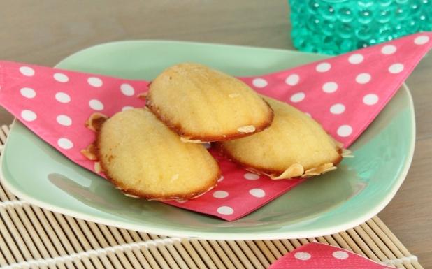 Madeleines (vanille cakejes) (2)